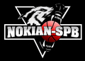 NOKIAN-SPB.RU